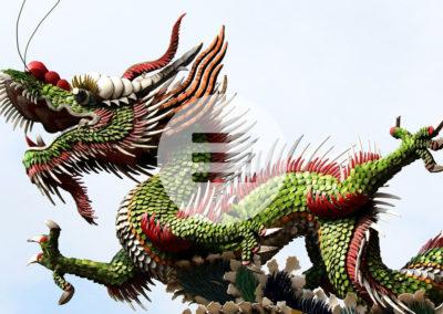 Krebstherapie – Claw of Dragon – Kralle des Drachens