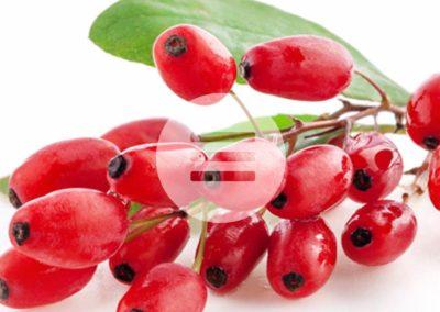 """""""5 am Tag"""" – täglich 5-7 Portionen Obst und Gemüse"""