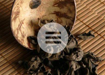 Vitalpilz – Auricularia