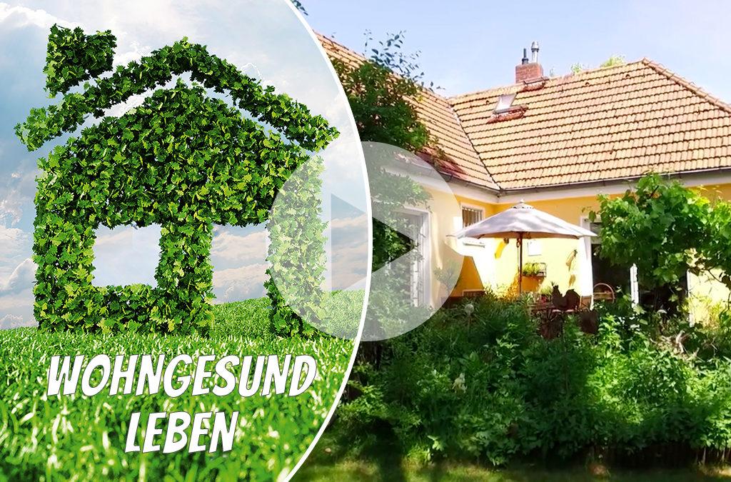 Wohngesund Leben: Renneberg – Aus grau mach grün