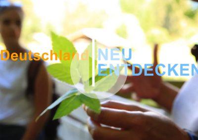 Kräuterwanderung und ein Besuch auf der Alm – Garmisch-Partenkirchen