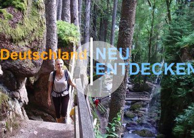 Natur im Schwarzwald und ein Besuch im Hotel Albtalblick